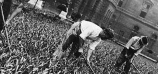 Российское хозяйство в годы войны